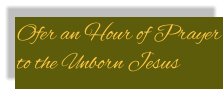 Ofer an Hour of Prayer to the Unborn Jesus