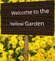 Welcome to the Yellow Garden